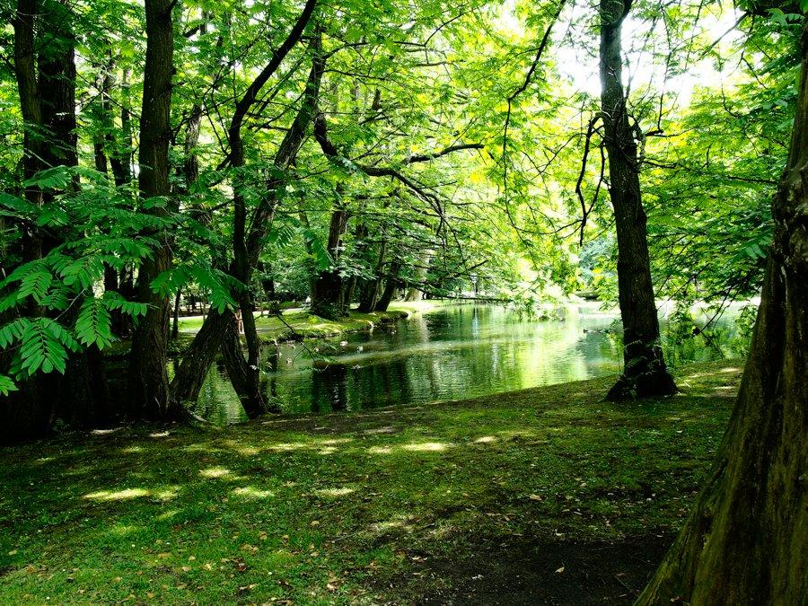 Park Oliwski [zdjęcia]