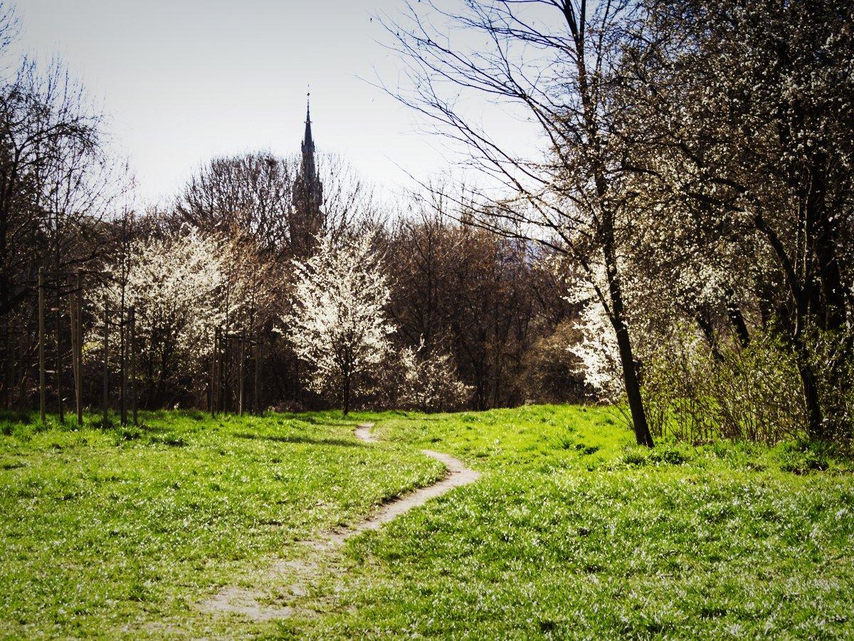 Kraków - nieznane miejsca, atrakcje, zwiedzanie - Wzgórze Lasoty