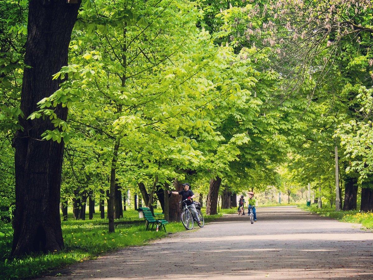 Kraków - ciekawe miejsca, nieznane miejsca - Park AWF, Park Lotników