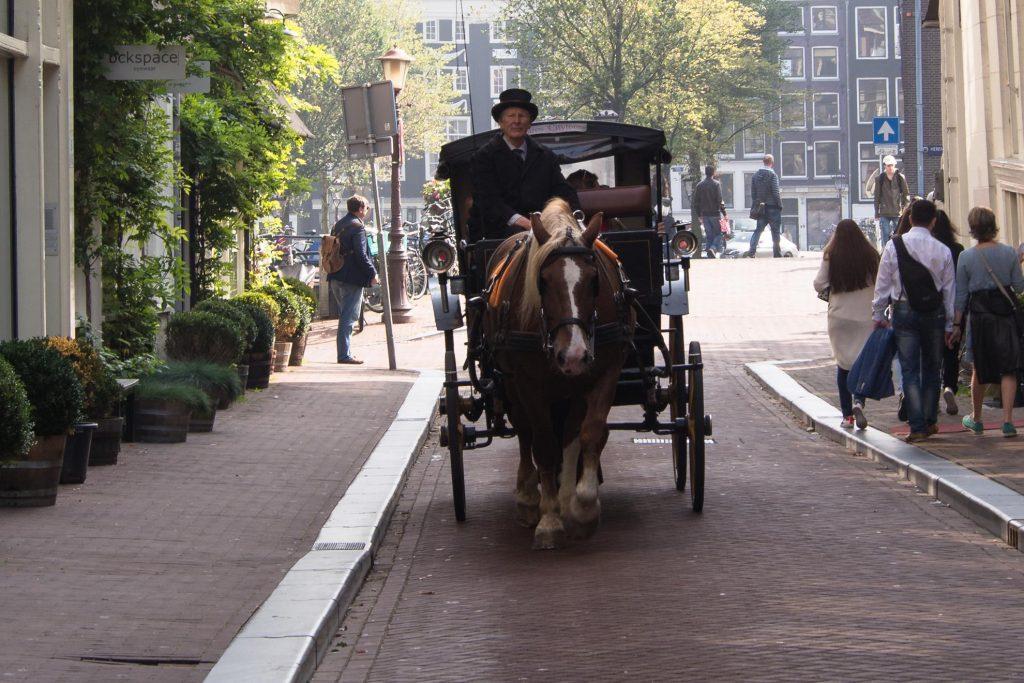 W Amsterdamie warto zobaczyć stare dorożki.