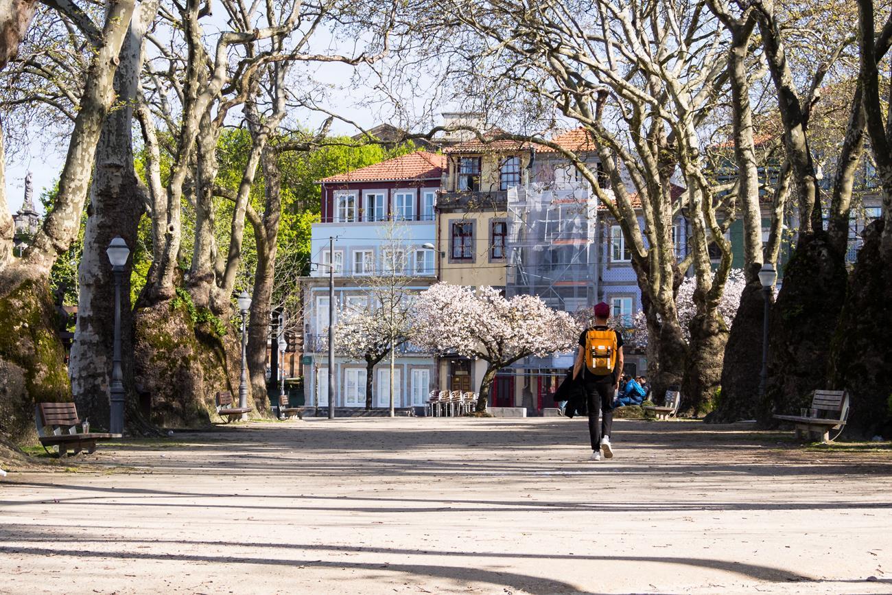 Jardim da Cordoaria, Porto - co zobaczyć