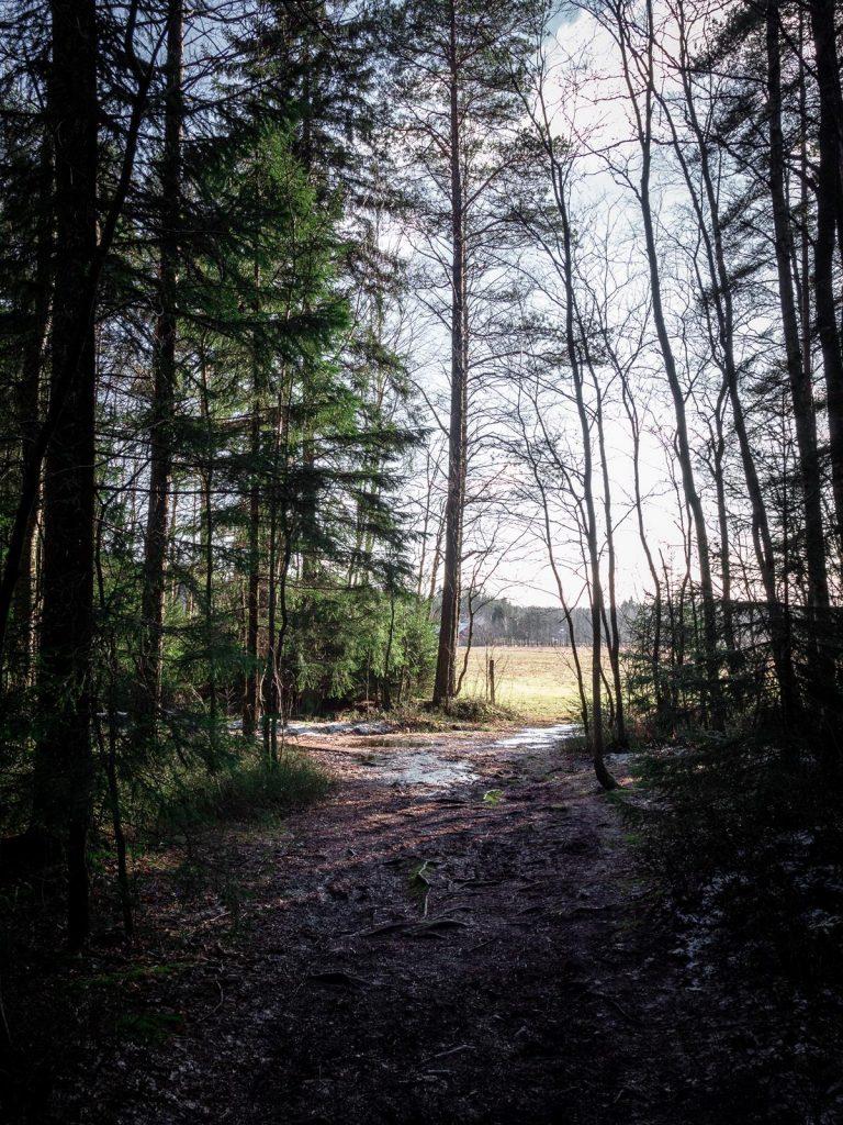 Turku - Pomponrahka